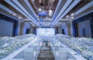 NIMI Very Blue(ベリーブルー)の新製品が間もなく中国で発売されます